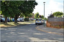 SU8594 : Narrow Lane by N Chadwick