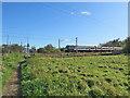 TL4748 : Northbound train near Whittlesford by John Sutton