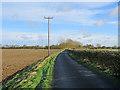 TL6770 : On Badlingham Road in autumn by John Sutton