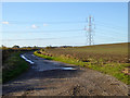 TL1579 : Track to Coppingford Lodge Farm by Robin Webster