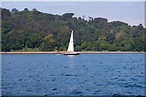 SX4651 : Boat off Redding Point by N Chadwick