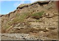 J2105 : Facies in the cliff face near Cooley Point by Eric Jones