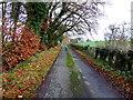 H5270 : A rustic scene, Bancran by Kenneth  Allen