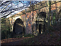 SP3677 : Sowe Viaduct, Willenhall, southeast Coventry by Robin Stott