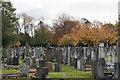 SJ7786 : Hale Cemetery by Bill Boaden