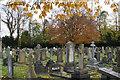 SJ7886 : Hale Cemetery by Bill Boaden