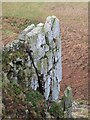 NY7667 : Hadrian's Buttress by Crag Lough by Mike Quinn