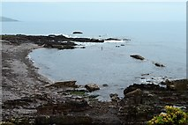 SX5048 : Wembury Point by N Chadwick