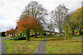SP1298 : Green enclave in Roughley by Bill Boaden