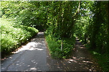 SX4349 : Footpath junction, South West Coast Path by N Chadwick