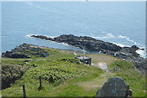SX4448 : Penlee Point by N Chadwick
