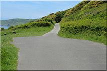 SX4448 : South West Coast Path by N Chadwick