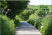 SX4249 : Cornish lane by N Chadwick