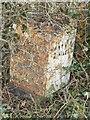 SJ6555 : Old Milepost by J Higgins