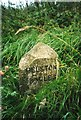 SW6939 : Old Milestone by Ian Thompson
