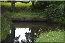 TQ3228 : Pond, Great Hook Shaw by N Chadwick