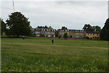 TL4558 : Midsummer Common by N Chadwick