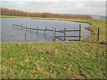 SK2368 : Pond on Calton Pastures by Trevor Rickard