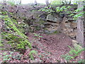 TA0485 : Sandstone quarry in Jackson's Lane, below Oliver's Mount by John S Turner