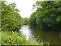 TQ7454 : River Medway by Robin Webster