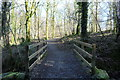 NX6055 : Track in the Woods by Billy McCrorie
