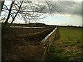 SJ6581 : Looking across Whitley Reed by Paul Baxter