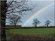 SE5833 : Rainbow over Spark Hagg wood, Near Selby by Paul Allison