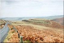 NT6168 : White Castle Hillfort by Paul Allison