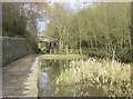 SD9200 : The former Waterhouses Tunnel at Daisy Nook Country Park by Martin Clark