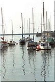 SX4854 : Marina, Plymouth Harbour by D Johnston