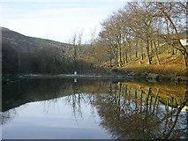SD9806 : Wall Hill Brook Reservoir, Dobcross by Martin Clark