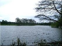 SJ9284 : Poynton Lake by Gary Barber