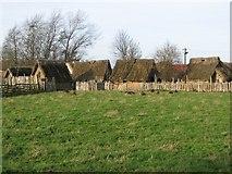 SE6452 : Murton Park Viking Village by Martin Norman