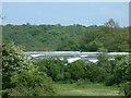 TQ3199 : Greenhouses at Crews Hill by Stephen Dawson