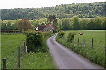 SU7591 : Turville by Brendan and Ruth McCartney