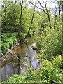 SO9855 : Piddle Brook near Kington. by Richard  Dunn