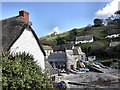 SW7214 : Cadgwith Cove by Richard Johns