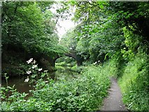 NT1070 : Union Canal by Richard Webb
