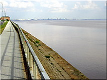 TA0626 : The North Bank of the Humber by Andy Beecroft