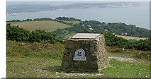 SZ5778 : Luccombe Down by Steven Muster