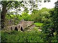 S7909 : Bridge at Tintern Abbey by Pam Brophy