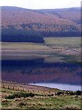 NO2561 : Backwater Reservoir by Karen Vernon