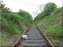 NT2967 : Disused railway by Richard Webb