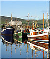 Q4400 : Early morning trawler scene in Dingle Harbour by Pam Brophy