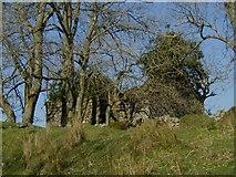 SN7514 : Old Shepherd's House by Hywel Williams