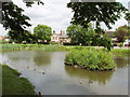 SU9093 : Pond on Tylers Green, near Penn by David Hawgood