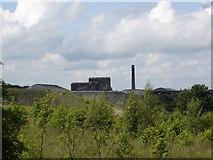 NS9467 : Brickworks, Armadale, West Lothian by paul birrell