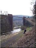 SS8094 : Disused railway bridge at Pontrhydyfen by Steve Rigg
