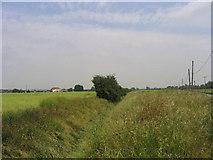 TQ6285 : Bulphan Fen, Bulphan, Essex by John Winfield