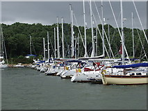 TM1939 : Woolverstone Marina by Nigel Richardson